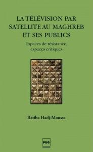 La television par satellite au Maghreb et ses publics